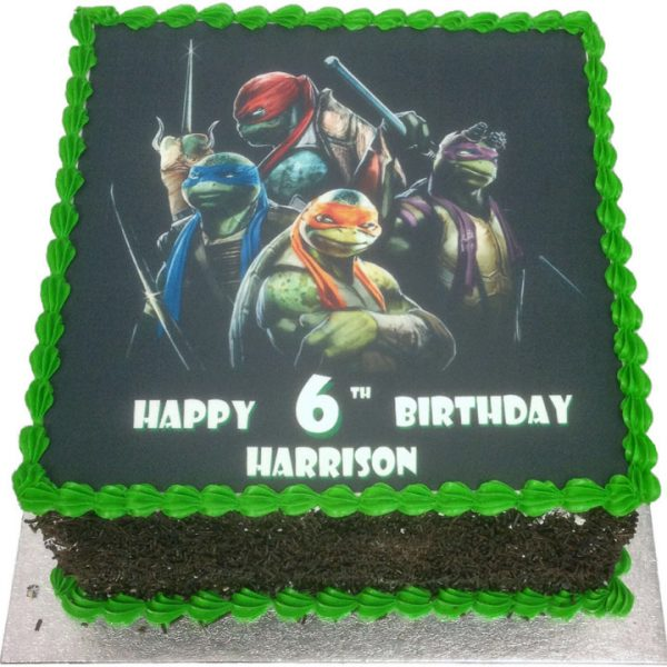 Fantastic Teenage Mutant Ninja Turtles Birthday Cake Flecks Cakes Funny Birthday Cards Online Fluifree Goldxyz