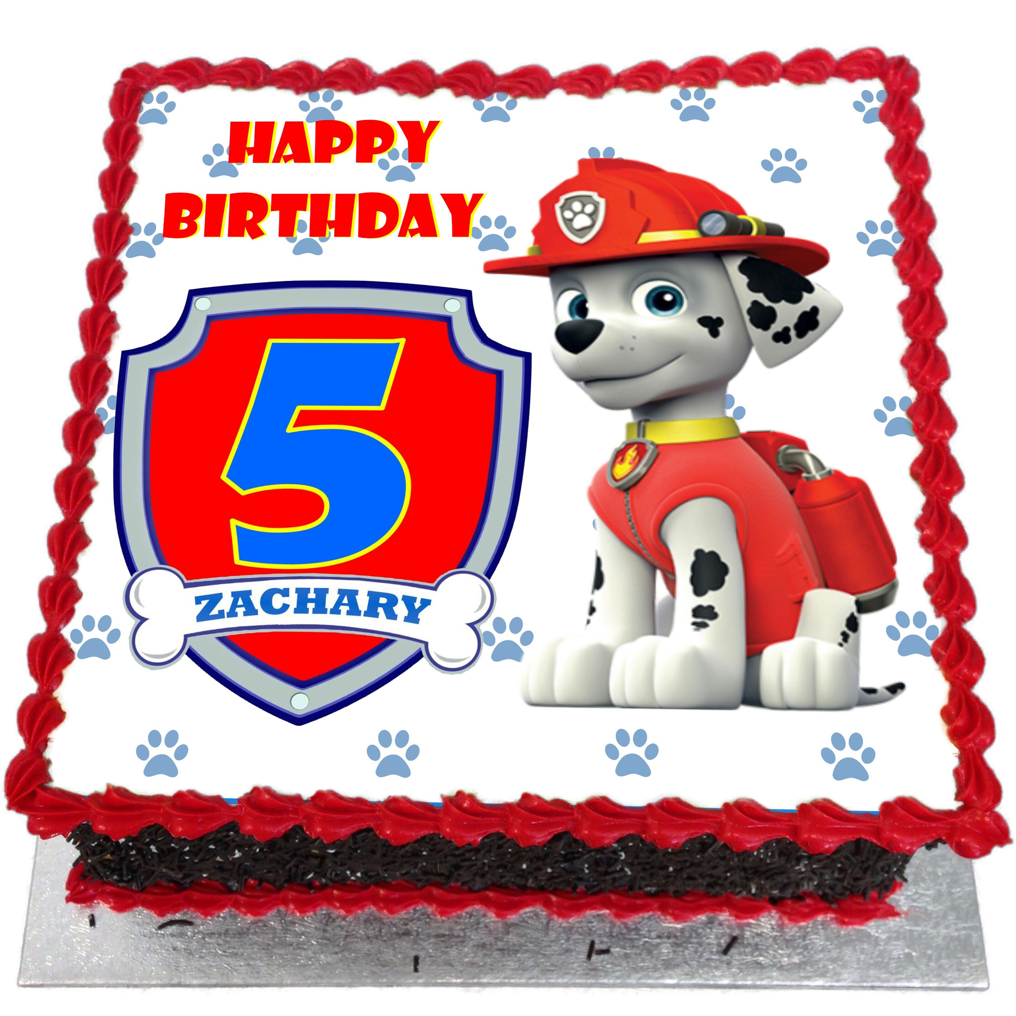 Paw Patrol Birthday Cake - Flecks Cakes